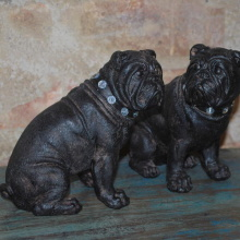 Mopsiga Bulldogs, fraktfritt