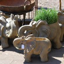 Elefant-kruka