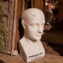 Frenologiskt huvud