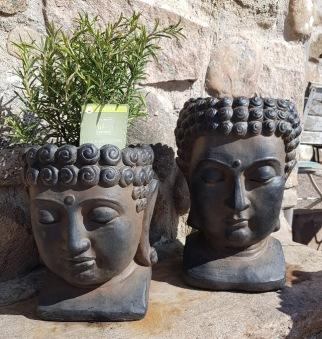 Buddha huvud 2 höjder