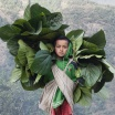 Gurung Boy, Nepal