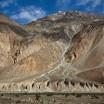 Erosion, Pakistan