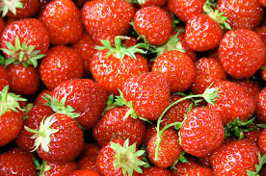 Försäljning av jordgubbar