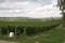Vinfält och omgivning.