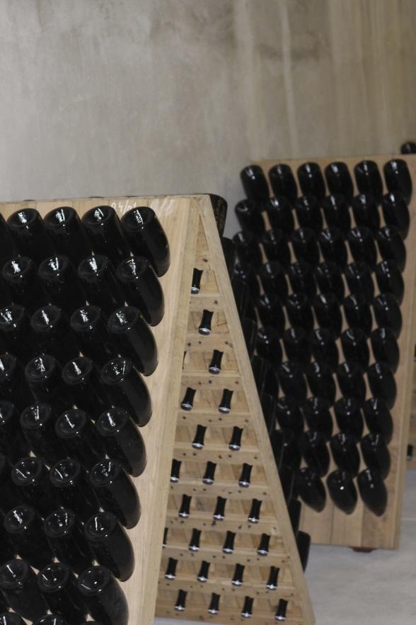 Champagneflaskor i snygga rader i champagneprocessen.