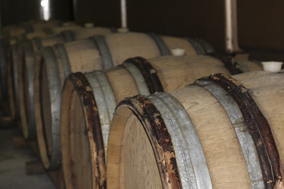 Druvsaften lagras även i franska ekfat från Bourgogne. Det blir den ekfatslagrade Champagne Mathelin L'Orée des Chênes brut.