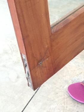 En besökare vi gärna slipper framöver...