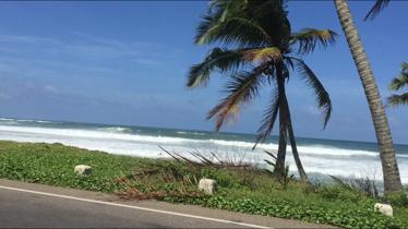Kan detta vara världens vackraste väg till skolan?