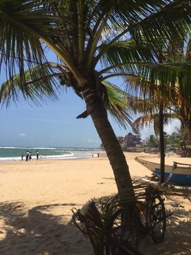 Vackra Sri Lanka!
