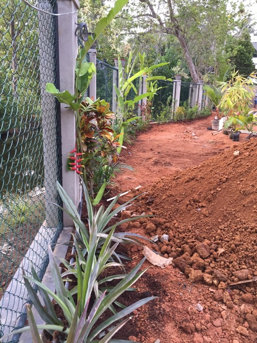 En härlig plantering utmed hela kanalen!