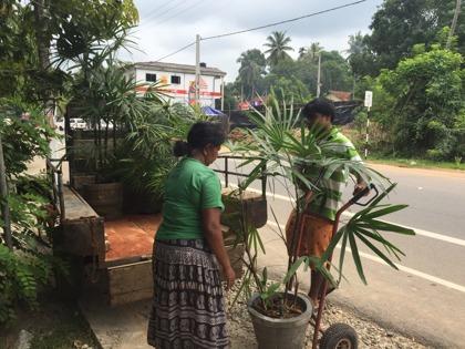 Har inhandlat flera växter...behövs både utomhus men också inomhus!