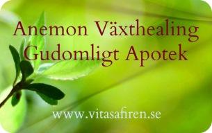 Anemon Växthealing - Gudomligt Apotek. Distanskurs, healingkurs på distans.