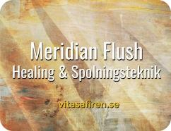 Meridian Flush - Healing och spolningsteknik, healing kurs distans, healingkurs, healingmetod, healingutbildning, onlinekurs distans