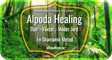 1.Alpoda Healing djur och växter. Djurhealing och växhealing. Du kan heala till alla djur och till växtriket. 2