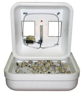 Äggkläckningsmaskin Hova Bator 60 standard - Hova Bator standard