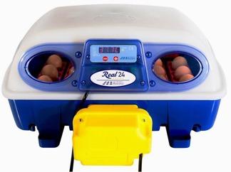 Äggkläckningsmaskin Real 24 automatisk - Real 24 automatisk