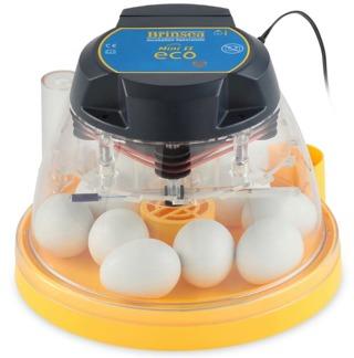 Äggkläckningsmaskin Brinsea Mini II Eco -