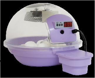 Äggkläckningsmaskin Fiem Smart 20 Digital - Fiem Smart 20 Ljuslila