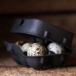 Äggkartonger för vaktel