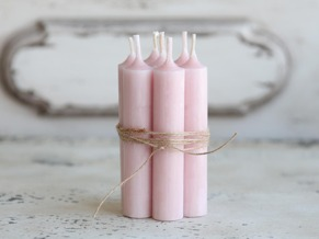 Stumpljus rosa