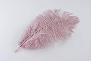 Strutsfjäder 30-35cm rosa