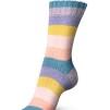 Regia Pairfect Rainbow Color 100g - Pairfect Pastel color 1731