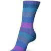 Regia Pairfect Rainbow Color 100g - Pairfect Blue color 1733