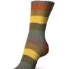 Regia Pairfect Rainbow Color 100g - Pairfect Autumn color 1734