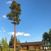 Stickläger Fattigskogen 2021