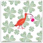 145-ibis på klöveräng