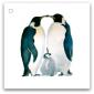 140 pingvinfamilj