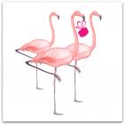 144-grattis flamingos