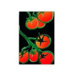 179 6x9 tomater sv