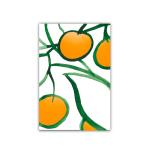 180 6x9 citrus