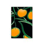 181 6x9 citrus sv