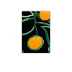 185 4x6 citrus sv