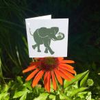 liten-elefant