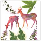 201 garden life rådjur blad och blommor