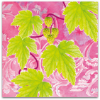 209-garden-life-humleblad-och-kottar