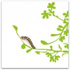 199-larv