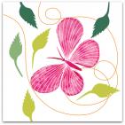 150-fjäril-rosa-o-vit