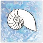 063-nautilus grafisk
