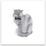 237-katt-med-fluga
