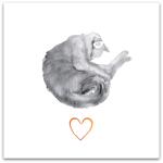 239-katten-vilar