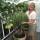 Jag i mitt växthus