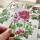 högsmala pelargonkort våren 19