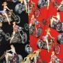 Motorcyklar och Pinupor  AH