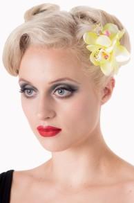 Blossom hårblomma - blossom hårblommor, lime