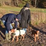 Kent, Lotta, Wilma & Alf