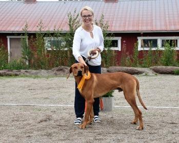 "Veckdalby`s Amazing Enar ""LEO"" 3:e bästa juniorhane i RR-specialen i Finland"